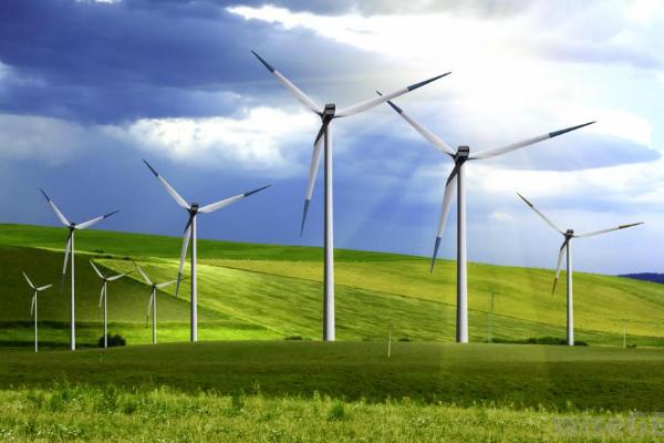 terrestrial-wind-farm1 2