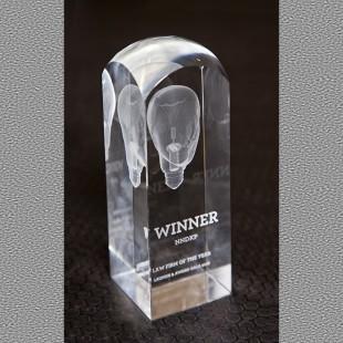 Trofeul pentru cea mai buna firma de avocatura a anului - NNDKP